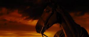 Czas wojny / War Horse (2011) PL.720p.BDRip.XviD.AC3-ELiTE + Rmvb / Lektor PL