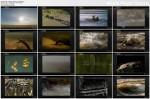 Urodzeni mordercy / Built for the Kill (2011) PL.TVRip.XviD / Lektor PL